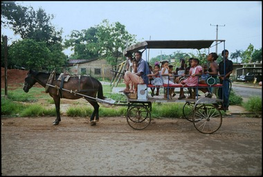 Cuban Horse & Carriage